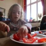 tomat05