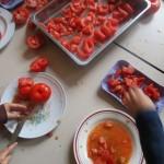tomat13