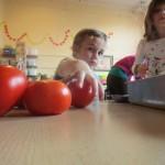 tomat15